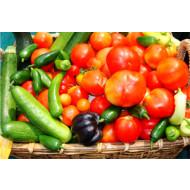 Лечение болезней томатов, перцев и огурцов