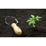 Принципы выбора грунта для растений